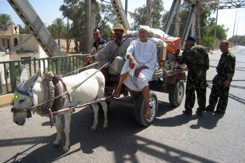 BAQUBA, IRAQ: Iraqi soldiers search a donkey-pulled cart at a checkpoint on a bridge in the center of the restive city of Baquba, northeast of Baghdad, 23 June 2007.