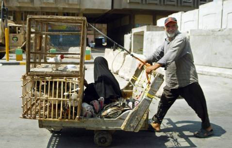 An Iraqi pushes a cart carrying his wife and the poultry he bought at the al-Gezail animal market on an empty al-Jamuria avenue in central Baghdad, 24 August 2007.